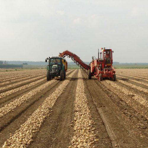 Landbouw-EFFanders