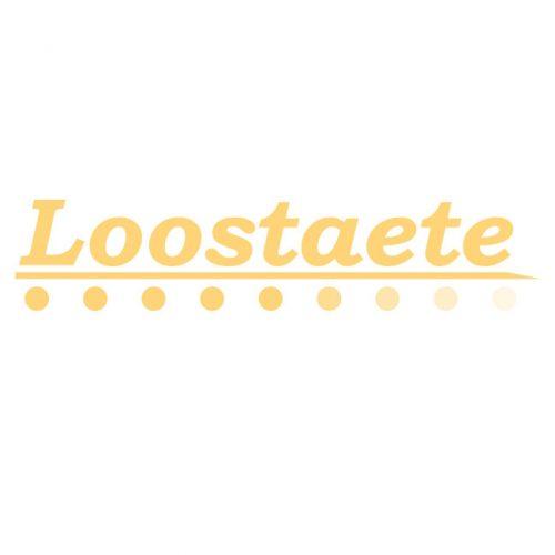 Logo Loostaete Amsterdam