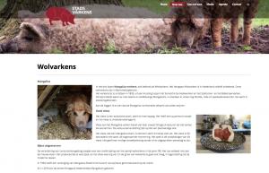Website WordPress Stadsvarkens